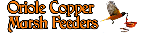 Oriole Copper Marsh Feeders