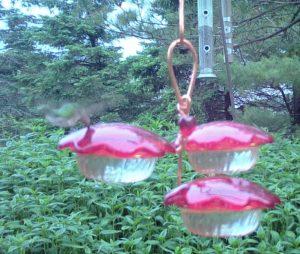 9 oz Hummingbird Feeder